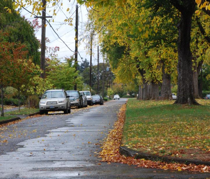 Photo Walk: Street